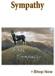 Sympathy - Cowboys of Faith